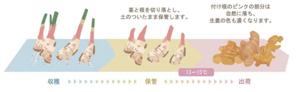 f:id:yachikusakusaki:20180514011708p:plain