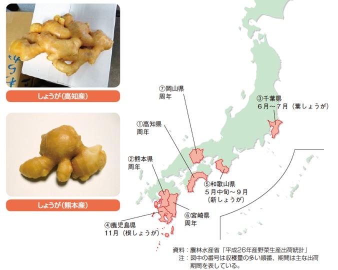 f:id:yachikusakusaki:20180514022653j:plain