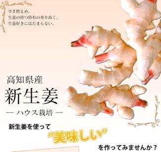f:id:yachikusakusaki:20180515111536j:plain