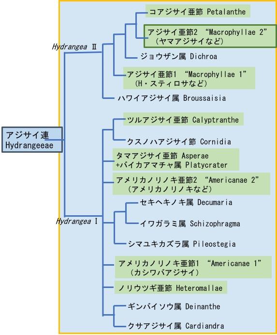 f:id:yachikusakusaki:20180520222719j:plain