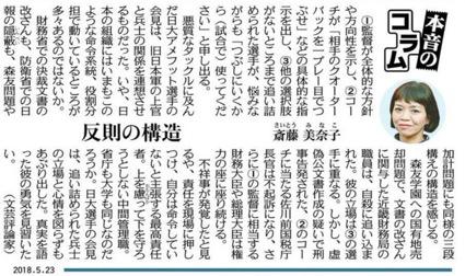 f:id:yachikusakusaki:20180523235416j:plain