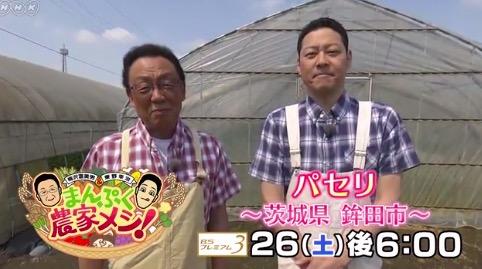 f:id:yachikusakusaki:20180606015630j:plain
