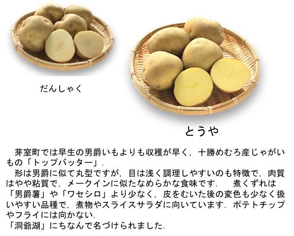 f:id:yachikusakusaki:20180713003953j:plain