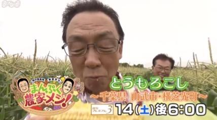 f:id:yachikusakusaki:20180721033500j:plain