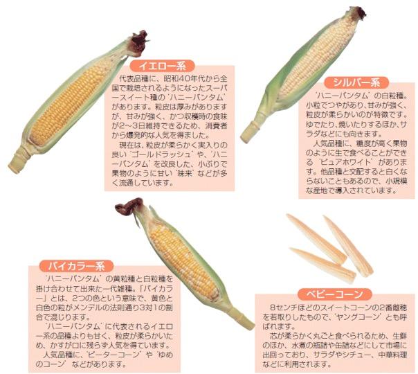 f:id:yachikusakusaki:20180722013914j:plain