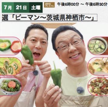 f:id:yachikusakusaki:20180801203431j:plain