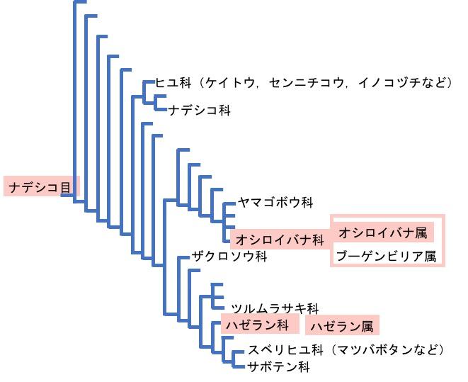 f:id:yachikusakusaki:20180901215128j:plain