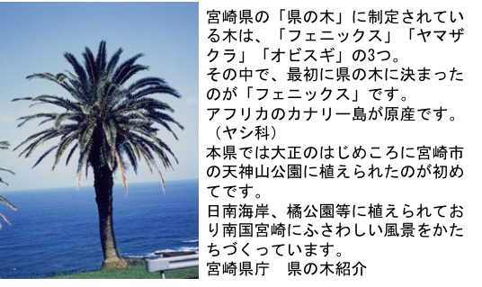 f:id:yachikusakusaki:20180910001931j:plain