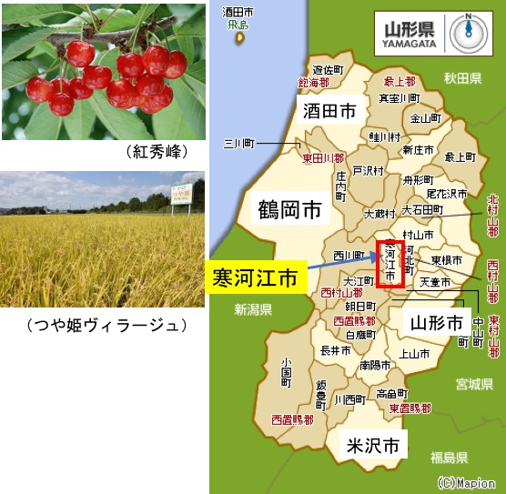 f:id:yachikusakusaki:20180915011054j:plain
