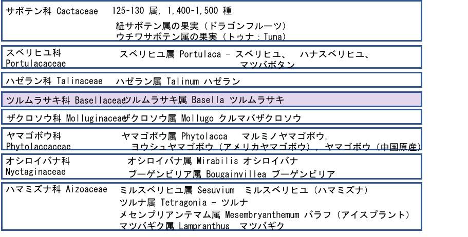 f:id:yachikusakusaki:20180915224937j:plain