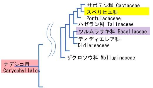 f:id:yachikusakusaki:20180916234903j:plain