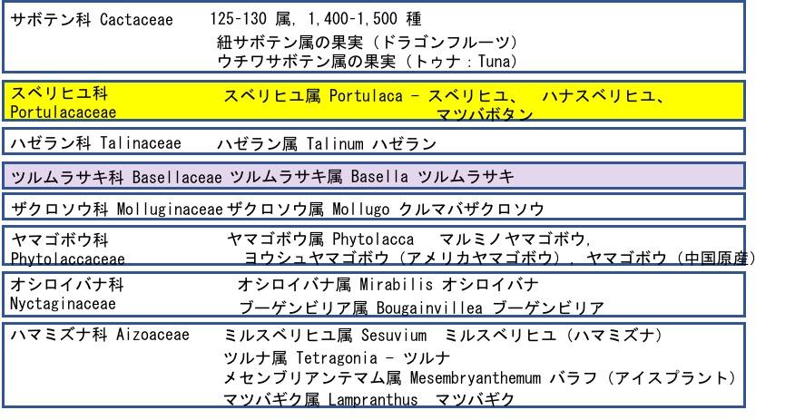 f:id:yachikusakusaki:20180928152339j:plain