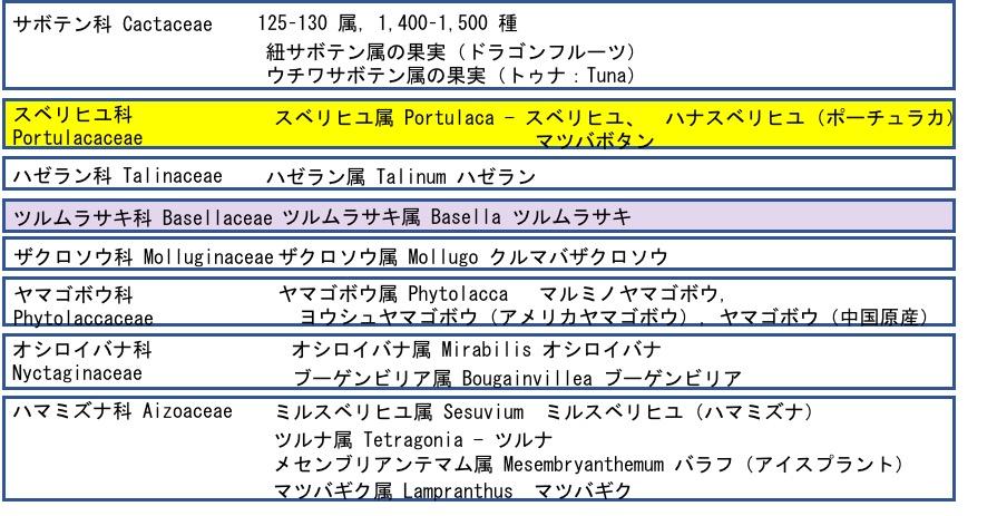 f:id:yachikusakusaki:20180928152737j:plain