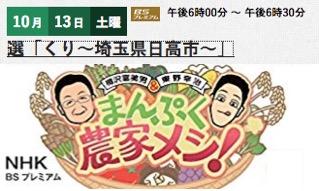 f:id:yachikusakusaki:20181026000906j:plain