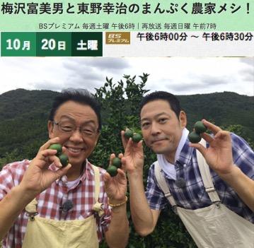 f:id:yachikusakusaki:20181102231053j:plain