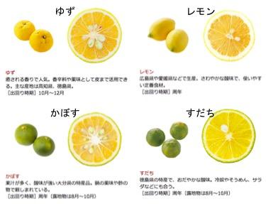 f:id:yachikusakusaki:20181103172411j:plain