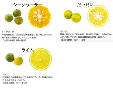 f:id:yachikusakusaki:20181103172426j:plain