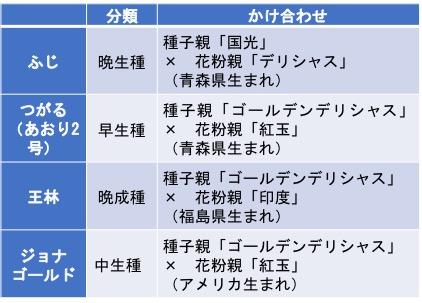 f:id:yachikusakusaki:20181218014823j:plain