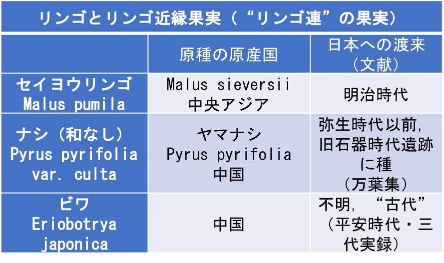 f:id:yachikusakusaki:20181221003019p:plain
