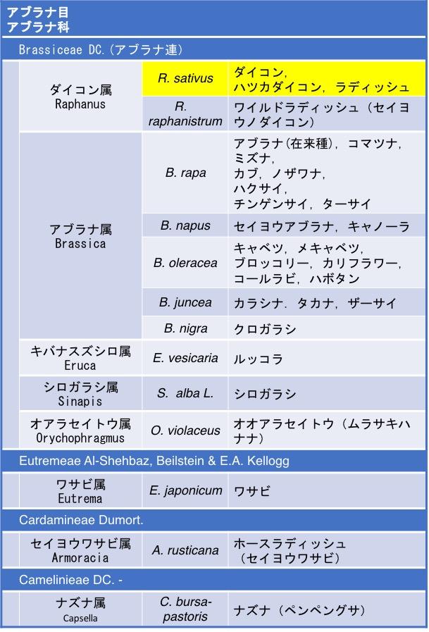 f:id:yachikusakusaki:20190129011101j:plain