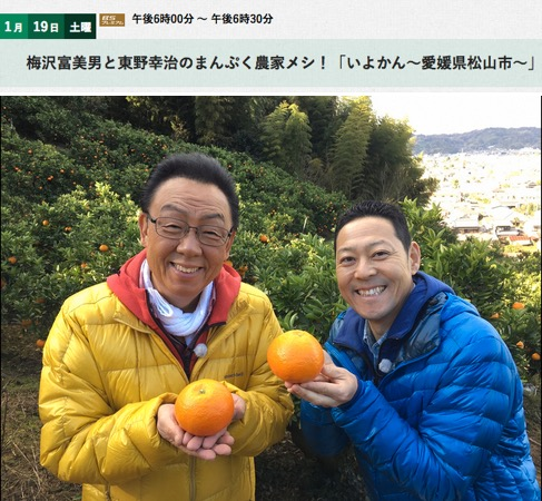 f:id:yachikusakusaki:20190207013656j:plain