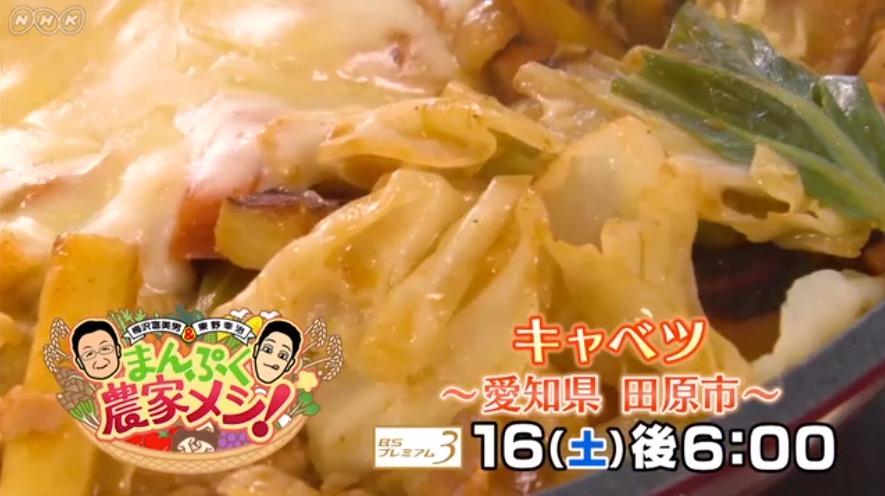 f:id:yachikusakusaki:20190218213456j:plain