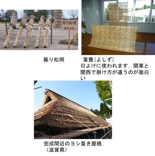 f:id:yachikusakusaki:20190224030145j:plain