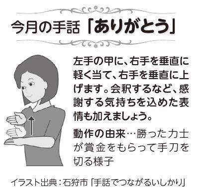 f:id:yachikusakusaki:20190301000509j:plain