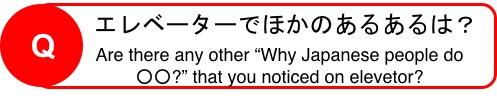 f:id:yachikusakusaki:20190301232402j:plain