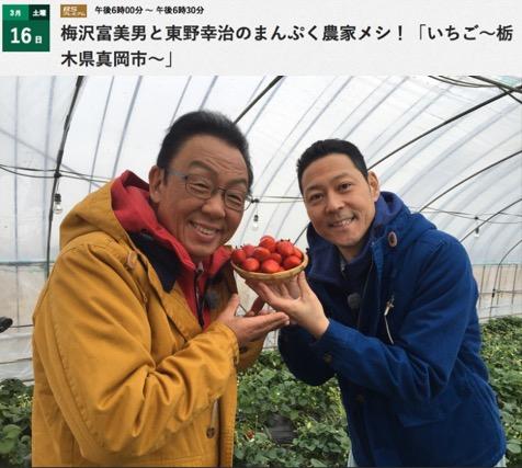 f:id:yachikusakusaki:20190322002706j:plain