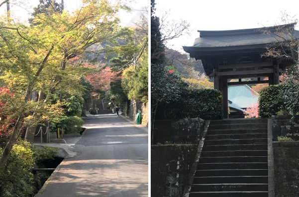 f:id:yachikusakusaki:20190407234753j:plain