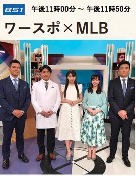 f:id:yachikusakusaki:20190509011203j:plain