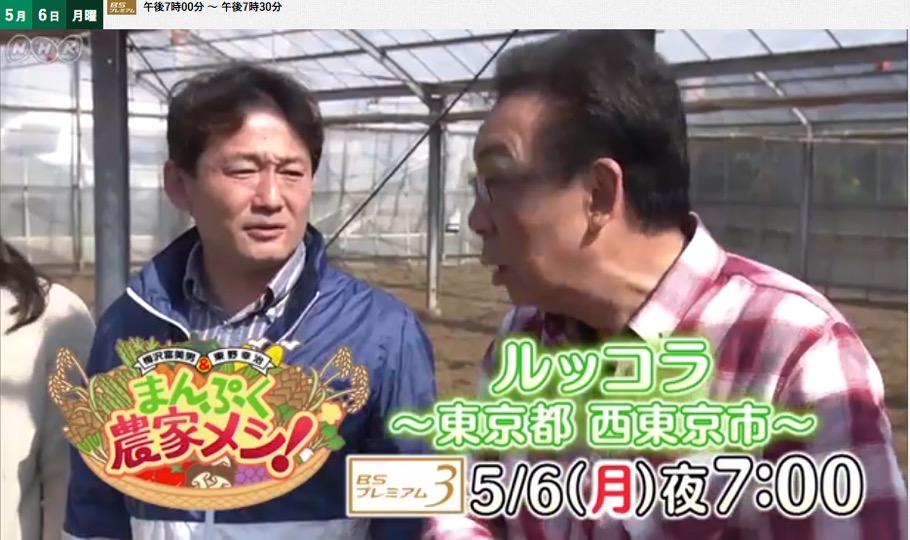 f:id:yachikusakusaki:20190511012703j:plain
