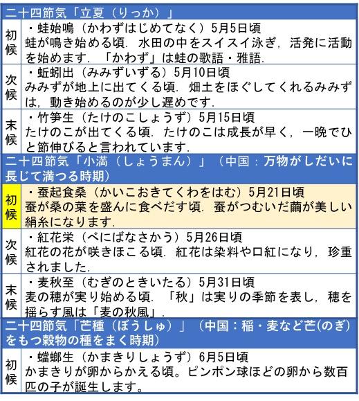 f:id:yachikusakusaki:20190525011824j:plain