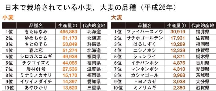f:id:yachikusakusaki:20190714000355j:plain