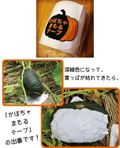f:id:yachikusakusaki:20190715001304j:plain