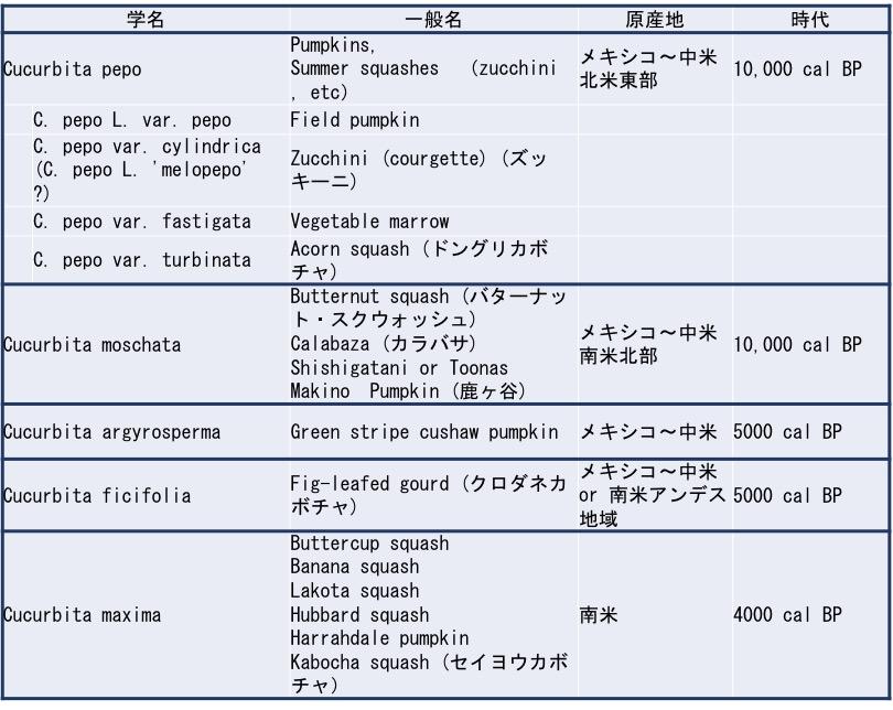 f:id:yachikusakusaki:20190719231545j:plain