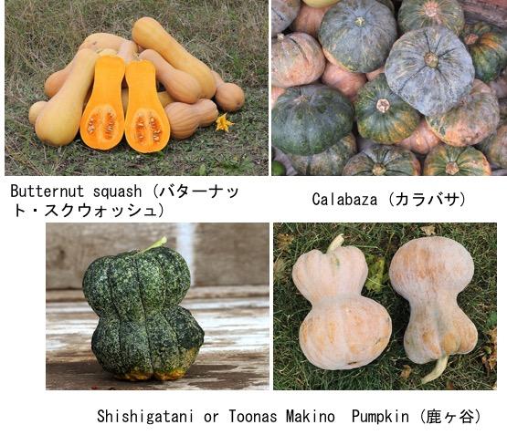 f:id:yachikusakusaki:20190719232719j:plain