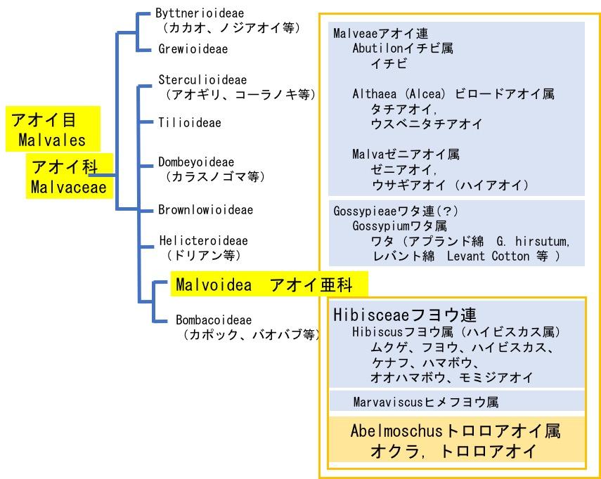 f:id:yachikusakusaki:20190814095548j:plain