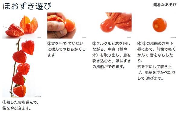 f:id:yachikusakusaki:20190821150317j:plain