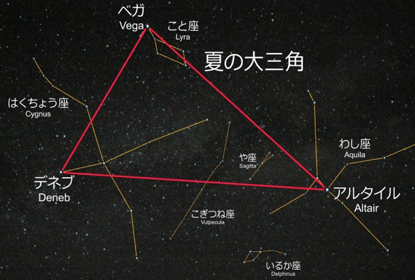 f:id:yachikusakusaki:20190827001126j:plain