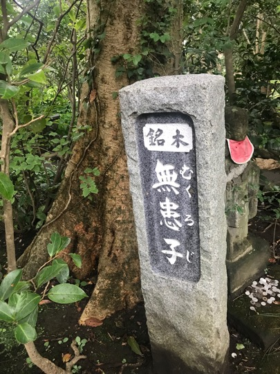 f:id:yachikusakusaki:20190901012706j:plain