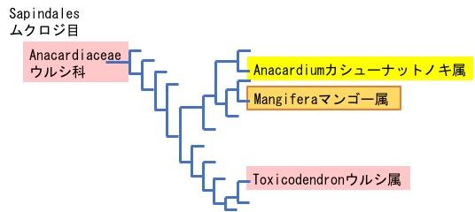 f:id:yachikusakusaki:20190905225559j:plain