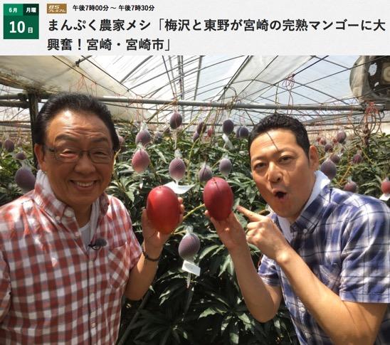 f:id:yachikusakusaki:20190908233057j:plain