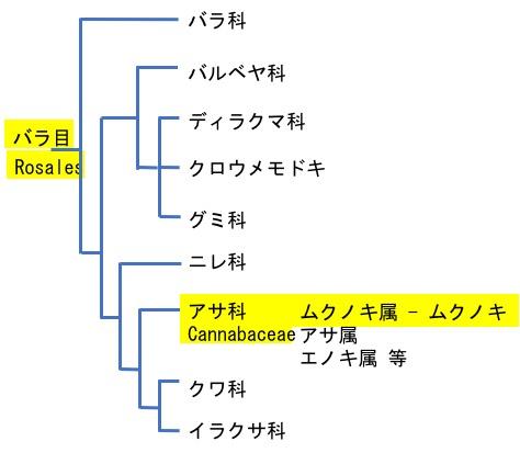f:id:yachikusakusaki:20190919223706j:plain