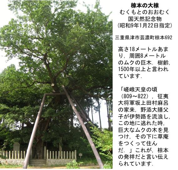 f:id:yachikusakusaki:20190920230850j:plain