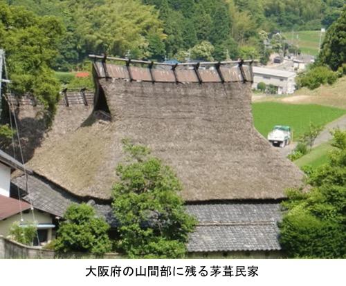 f:id:yachikusakusaki:20191014204730j:plain
