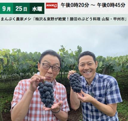 f:id:yachikusakusaki:20191015231406j:plain