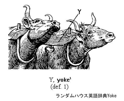 f:id:yachikusakusaki:20191029224631j:plain