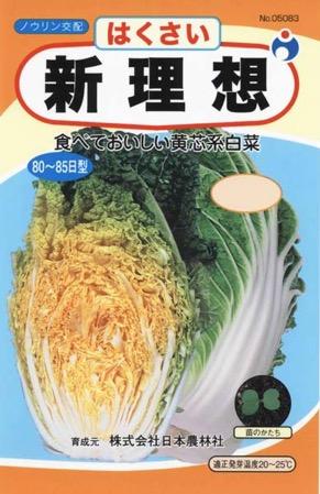 f:id:yachikusakusaki:20191114011951j:plain